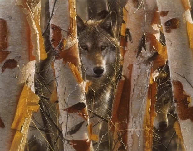 هناك شىء غريب فى هذه الصور المذهلة للحيوانات..هل يمكنك اكتشافه؟ 5 28/1/2021 - 11:03 م