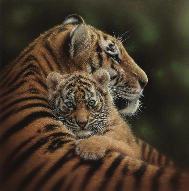 هناك شىء غريب فى هذه الصور المذهلة للحيوانات..هل يمكنك اكتشافه؟ 7 28/1/2021 - 11:03 م